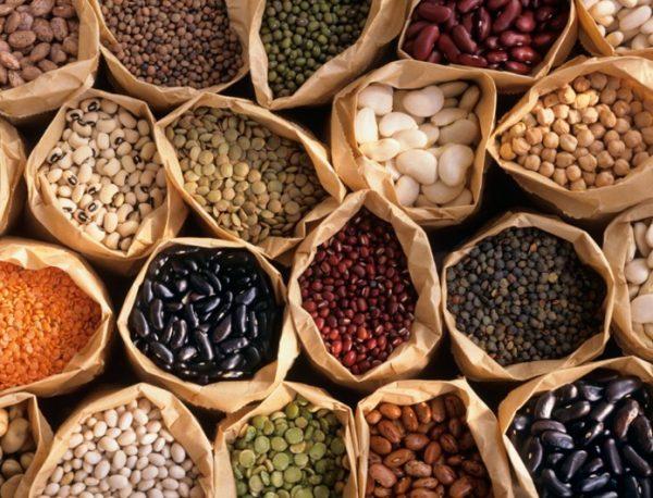 Также питание бобами позволяет восполнить недостачу железа, фосфора, магния, каротина, калия, кальция и серы
