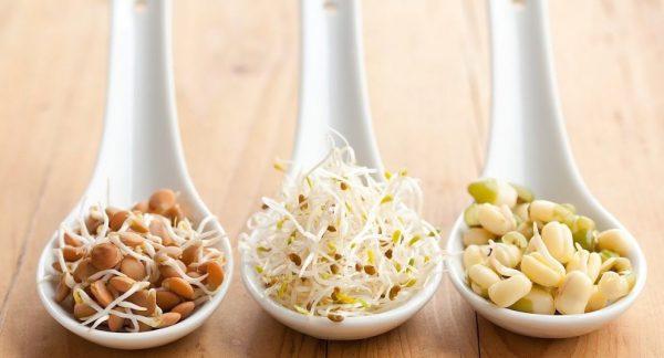 Главным преимуществом употребления в пищу пророщенных бобовых семян является то, что в таком виде в бобах содержится в два раза больше витаминов и минералов