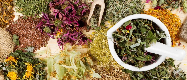 Трава от аппетита и для похудения. Какие травы аппетит снижают?