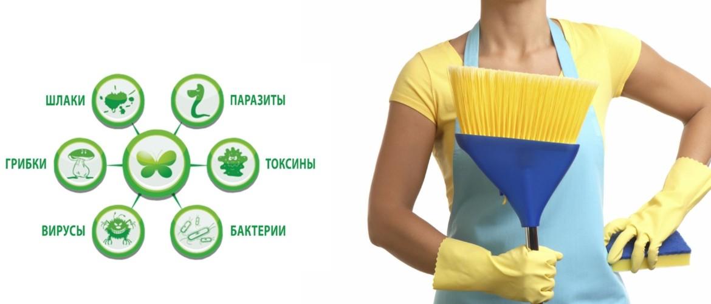 ТОП 10 способов очистки организма от шлаков и токсинов в домашних условиях