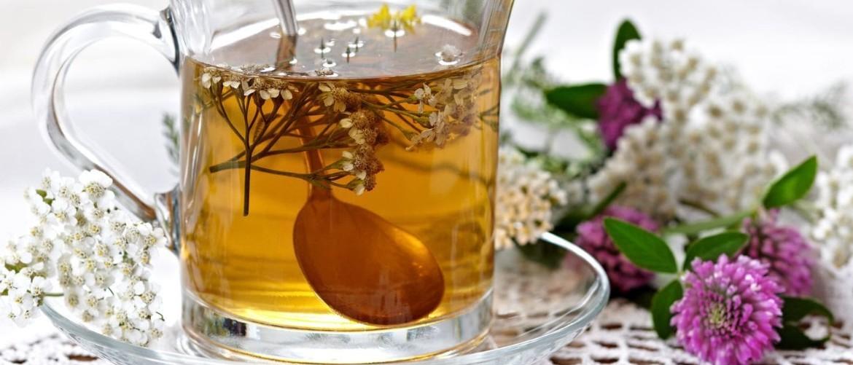 Похудение на травах - рецепты для применения в домашних условиях