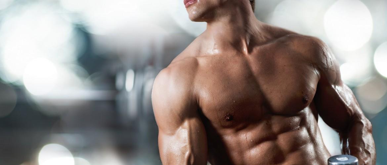 Протеин для набора мышечной массы основные принципы