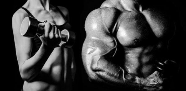 Ароматизация — превращение тестостерона в эстрадиол
