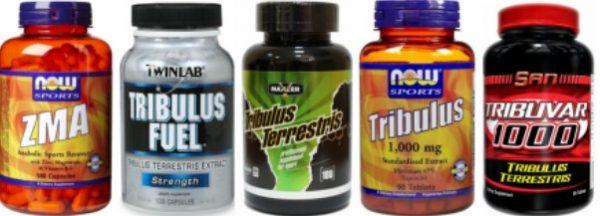 Трибулус для увеличения уровня тестостерона
