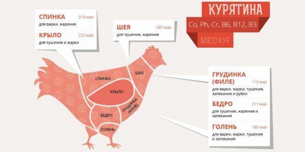 Сколько грамм белка в 100 граммах куриной грудки: рецепты и польза