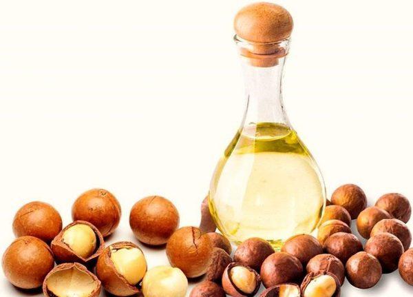 Полезные свойства и применение масла макадамии