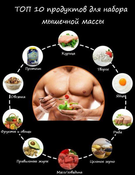 Важность питания обусловлена тем, что для наращивания мышечной массы необходим строительный материал
