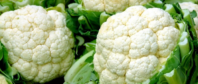Диета на цветной капусте для похудения: рецепты блюд, отзывы, результаты