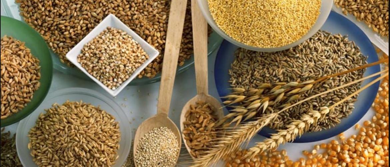 Пшеничная каша для похудения - диета на пшеничной каше. Меню пшеничной диеты на один день