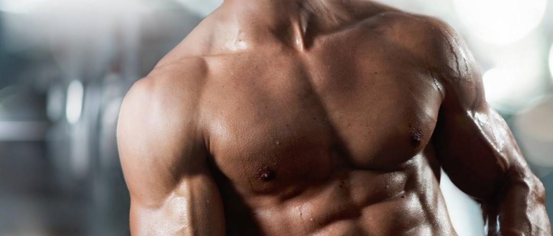 Набор мышечной массы для эктоморфа питание и упражнения
