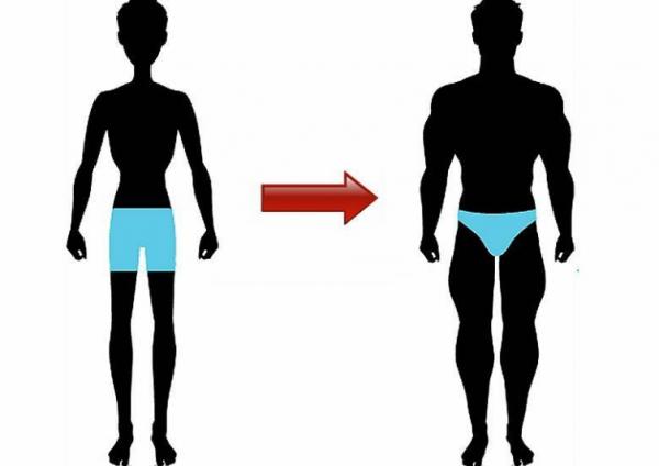 Как набрать вес мужчине в домашних условиях: основные правила