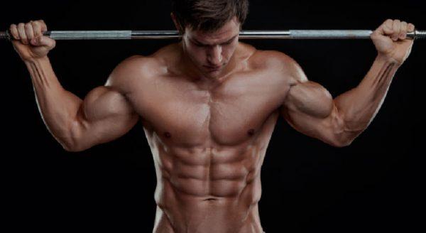 Программа тренировок на мышечную массу: что должна включать