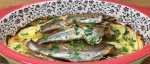Рыба судак польза и вред