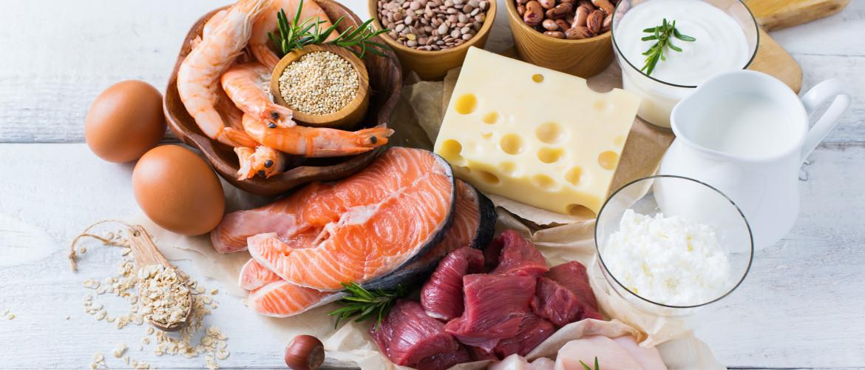Что значит белковая диета
